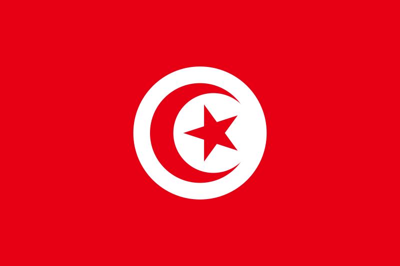 تونس - الإقالات الجماعية ضربة موجعة لاستقلال القضاء