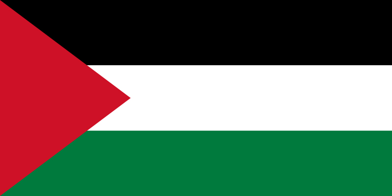 صورة حصول فلسطين على صفة دولة مراقب غير عضو في الأمم المتحدة يجب أن يفتح الطريق أمام تحقيق العدالة
