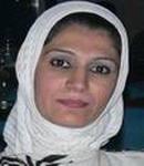 جولان الحميري (العراق)
