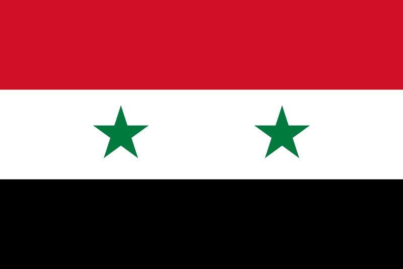 صورة 666 من منظمات المجتمع المدني من 13 دولة عربية  تطالب الكونغرس الأمريكي والبرلمان الفرنسي   بعدم اقرار العدوان على سوريا
