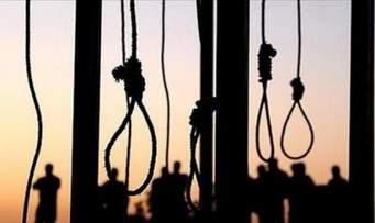 صورة مصر تحاكم 75 حتى الموت في محاكمة جماعية بشعة